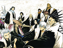 bleach_captains.jpg